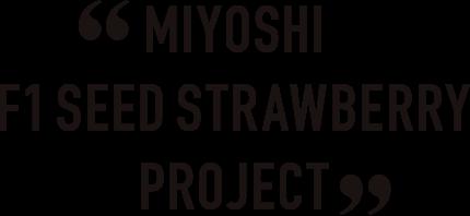 MIYOSHI F1 SEED STRAWBERRY PROJECT
